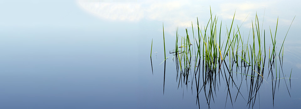 rslide-pond-grass-reflection-med